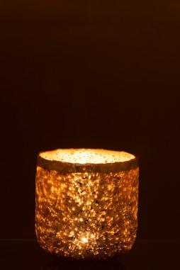 7502 Žvakidė didelė